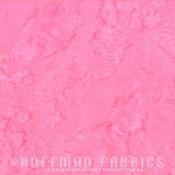 1895-12-Pink